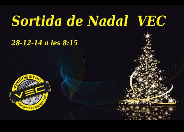 VEC Nadal 2014